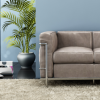 carpet-cleaning-2-1024x1024.png