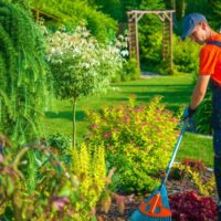 Midstate-Landscaping-Landscaping-1-1024x683-square.jpg
